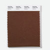 Pantone Polyester Swatch Card 19-0914 TSX Fertile Soil