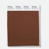 Pantone Polyester Swatch Card 19-1117 TSX Chocolate Cremoso