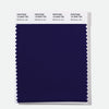 Pantone Polyester Swatch Card 19-3949 TSX _Blackberry Jam