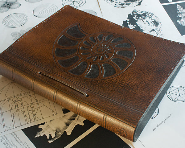 A5 brown leather journal - ammonite seashell design - earthworks journals - A5C002