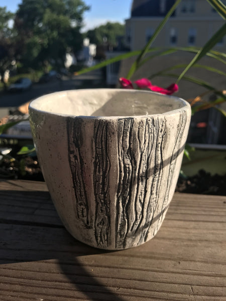 Hand built porcelain bowl with hand carved birch tree motif. Rustic, simple, classic, charming pottery.