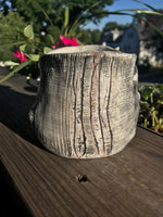 Hand built porcelain planter with hand carved birch tree motif. Rustic, simple, classic, charming pottery.
