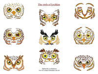 UIU075c-Owls of Locklan for the 230 x 300mm Hoop