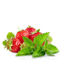 Menthol Strawberry Flavored eJuice/eLiquid Logo