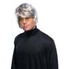 Pop Star Wig Gray Men's Shag Mod Beatles Mop 60s 70s Costume Accessory-Cyberteez