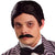 Addams Family Gomez Men's Moustache And Wig Costume Set