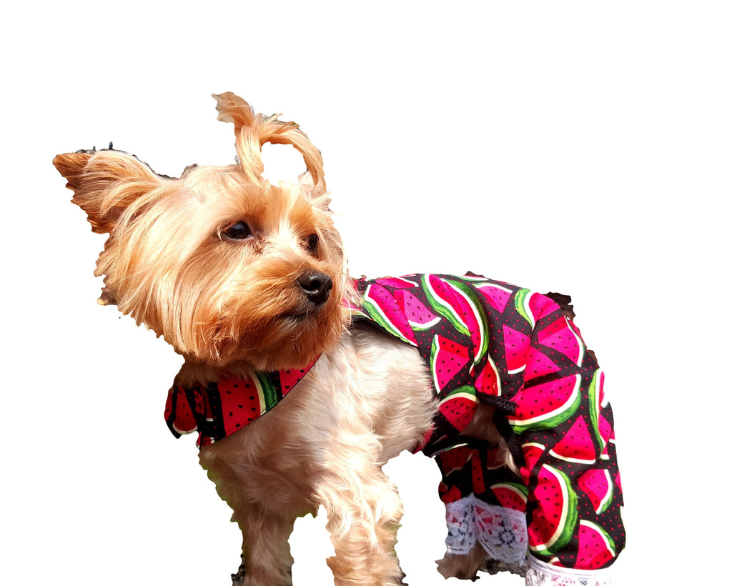 Watermelon Overalls - Chic Doggie Boutique  - 1