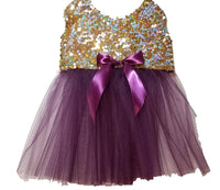Gold Sequins with Purple Full Tutu