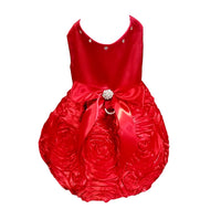 Red Satin with Rosette Skirt