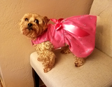Hot Pink Dog Dress
