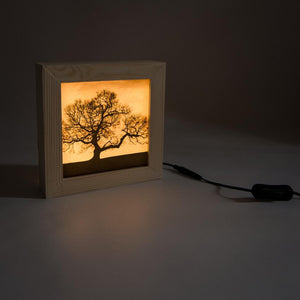 Handmade wooden light box showing the image of a tree