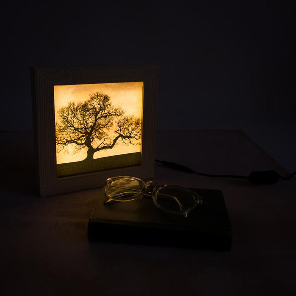 Dark tree wooden light box gently glowing in the dark