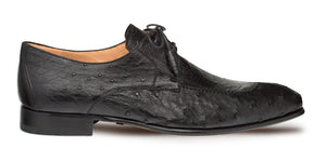 Amadeus Ostrich Lace-Up Shoe Black