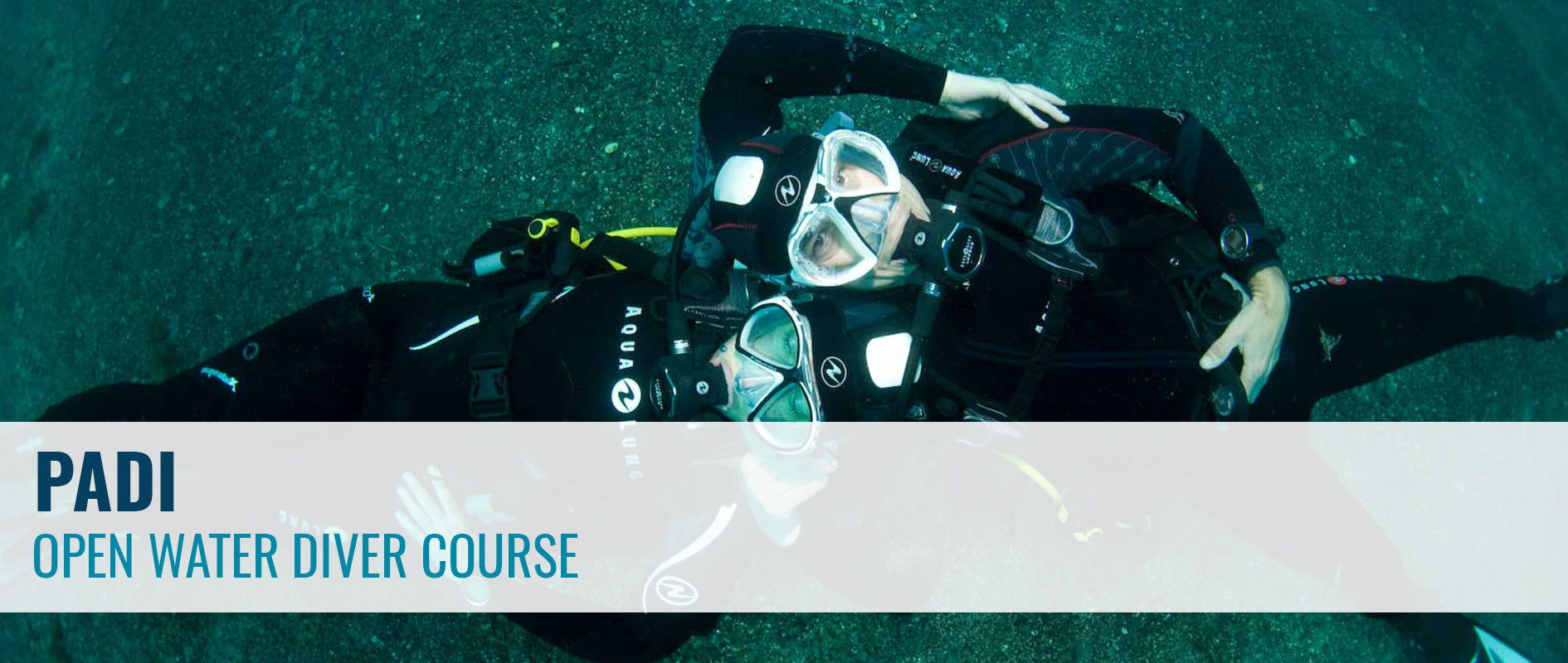 PADI Open Water Diver Course | Learn to Dive | Dive Otago