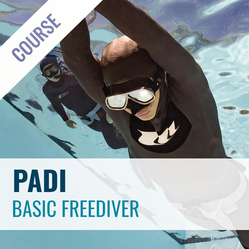 PADI Basic Freediver Course