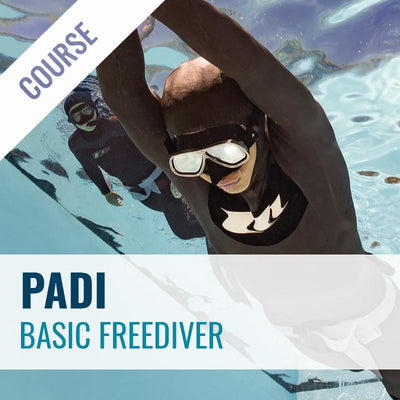 PADI Basic Freediver Course Course PADI