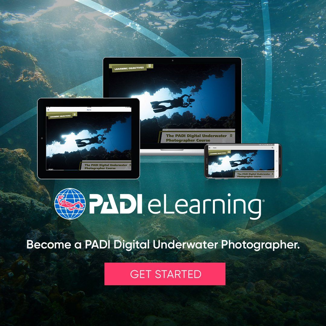 PADI Digital Underwater Photography eLearning Course PADI
