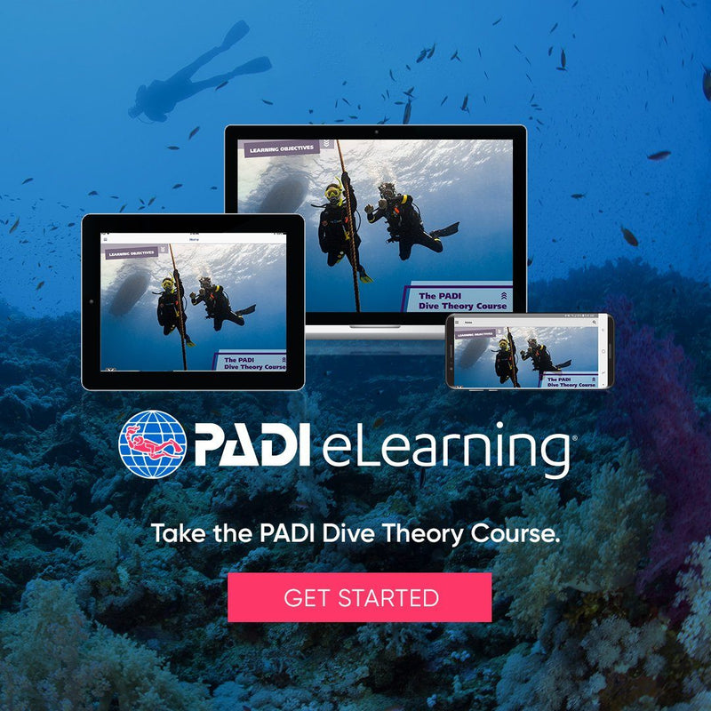 PADI Dive Theory eLearning Course PADI