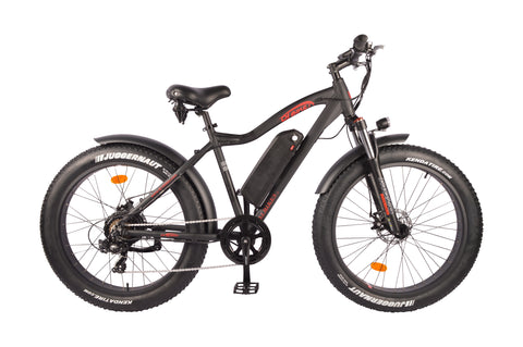 DJ Fat Bike 750W (US Only)
