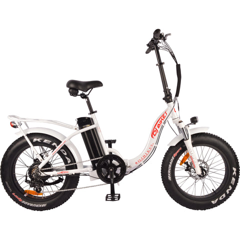 DJ Folding Bike Step Thru 750W (US Only)