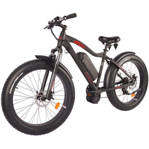 DJ Mid Drive Fat Bike 750W (US Only)