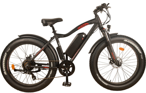 DJ Fat Bike 750W (Used)