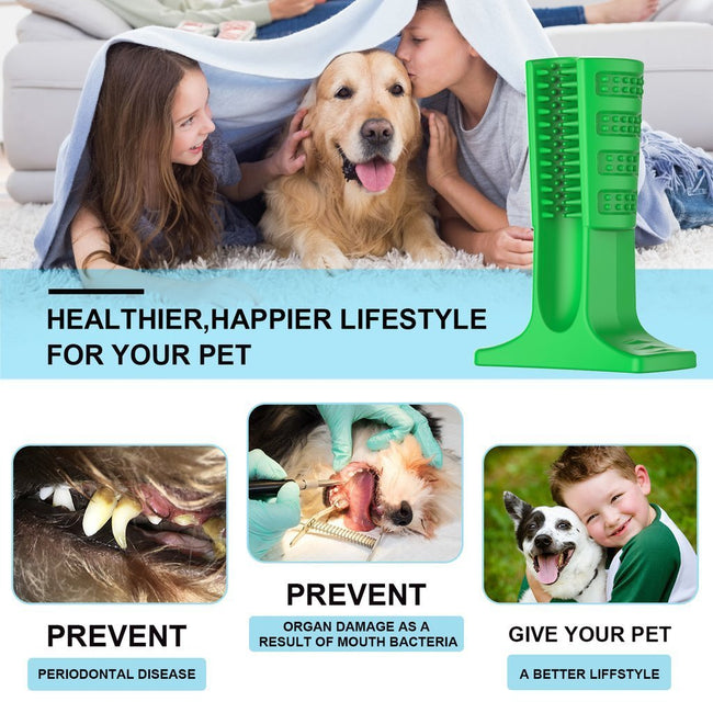 Dog Brushing Stick: The Revolutionary Way to Clean Your Dog's Teeth (Vet Recommended)
