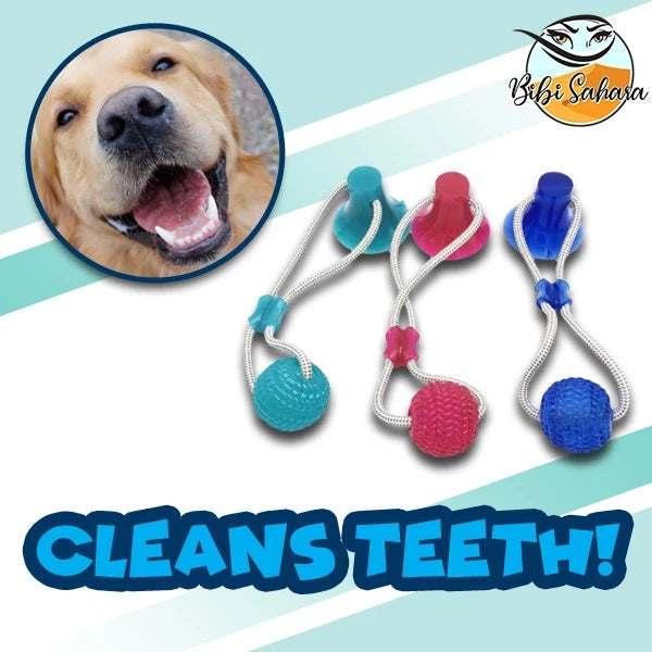 Suction Cup Pet Toy