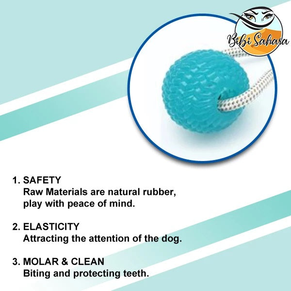 Suction Cup Chew Toy