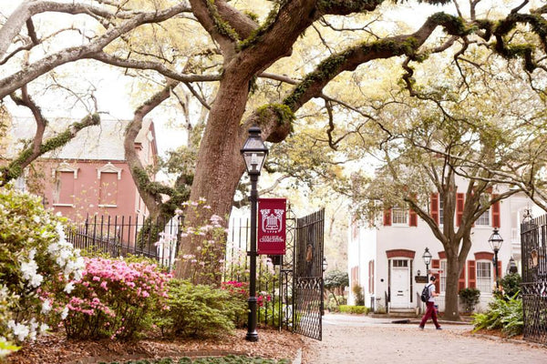 College of Charleston Campus Spring