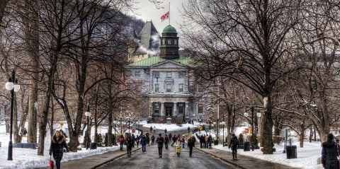 easy courses or electives at McGill