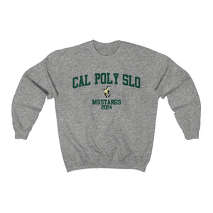 Cal Poly SLO Class of 2024
