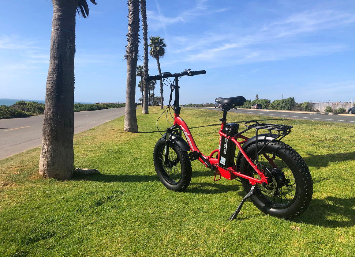 The Ram 750 Watt Low Step Electric Bike - Best E-Bike Store