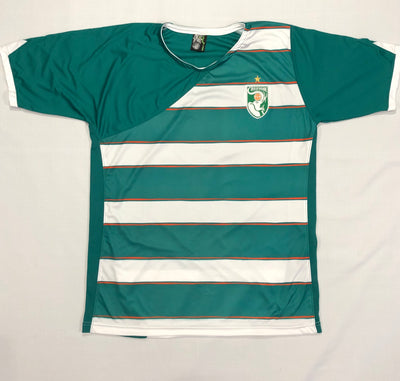 Ivory Coast Away Shirt WC2010 ~ Adult Replica