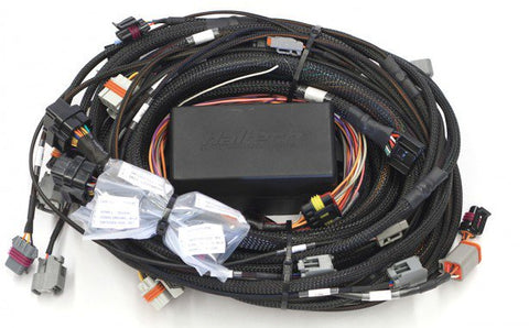 Elite 2500 GM GEN IV LSx (LS2/LS3 etc) non DBW Terminated Harness Only - Quickbitz