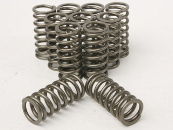 BA/BF/FG valve springs-spec 1 (new ovate design 300kw to 460kw) - Quickbitz