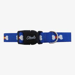 Colorado Dog Leash & Collar Combo