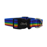 Rainbow Dog Leash & Collar Combo