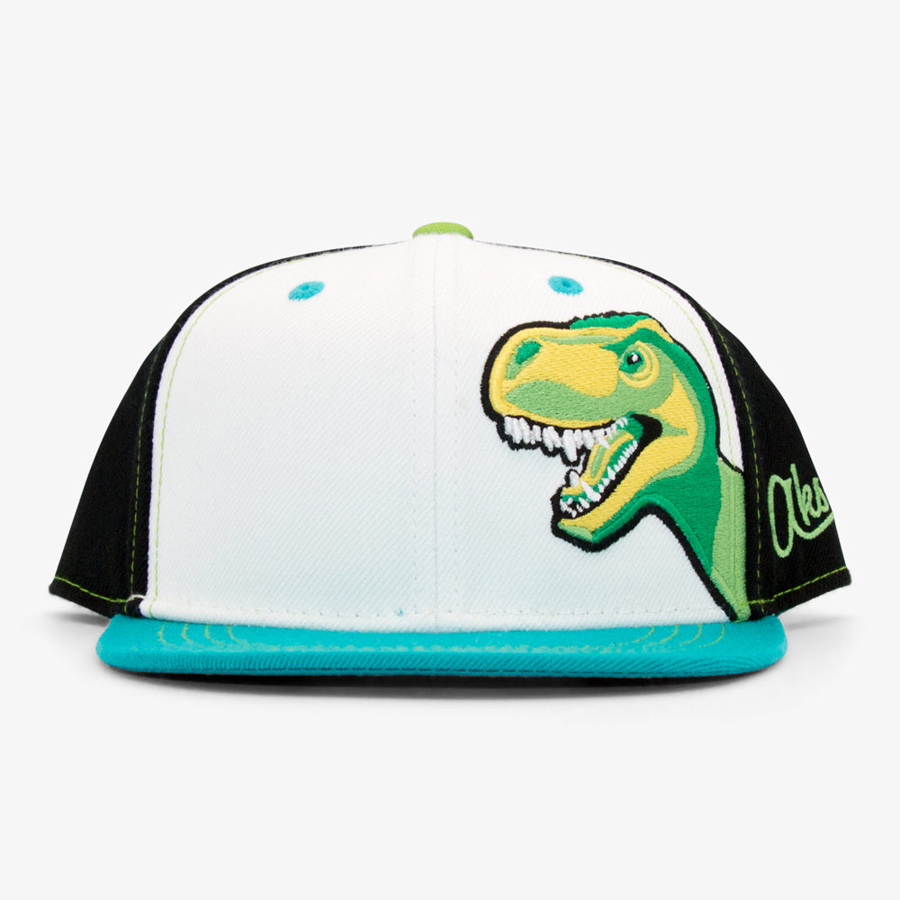 Youth T-Rex Dinosaur Snapback Hat