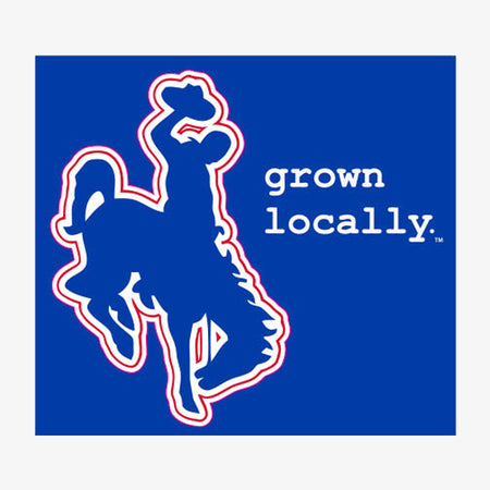Aksels Grown Locally Wyoming Cowboy Sticker - Royal