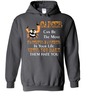 Cancer Can Be The Most Faithful Partner In Your Life Hoodie