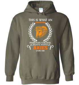 This Is What An Awesome Passionate Aries Looks Like Hoodie