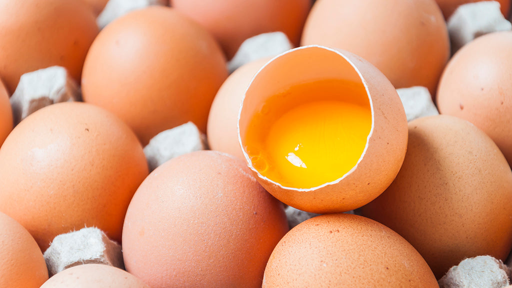 10 Health Benefits of Farm Fresh Eggs