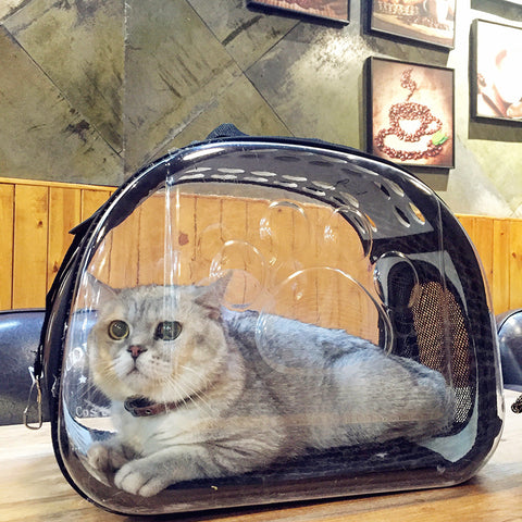 Transparent Pet Carrier, [TopTrends_4U]