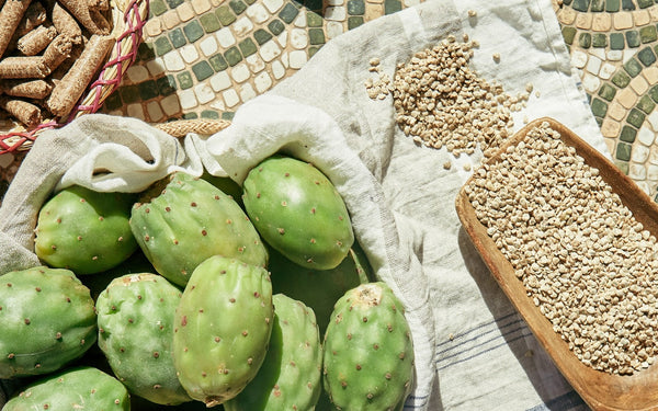 Basics of glow: Prickly pear seed oil