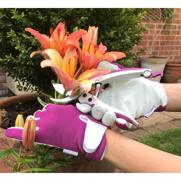"Ladies leather Gardening Glove (small) and 7"" Small Grip Secateurs Set - Ideal Garden Gift for Women"