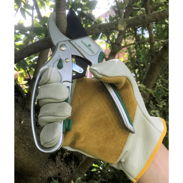Advanced 2-in-1 Ratchet Pruner Secateurs. Heavy Duty and 5X Power Garden Secateurs