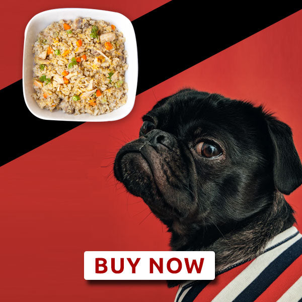 Adult dog food - Chicken meal - Monthly Subscription