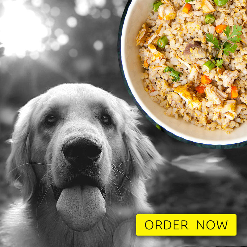 Dog food - mutton meal - Trial pack