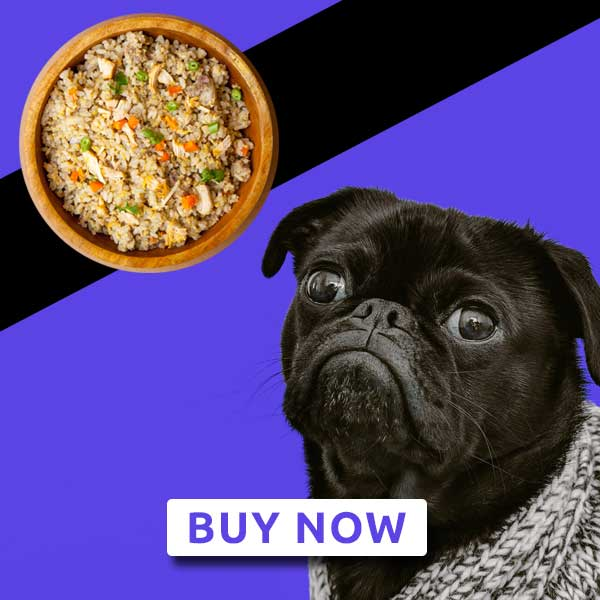 Adult dog food - Chicken liver meal - Weekly Subscription